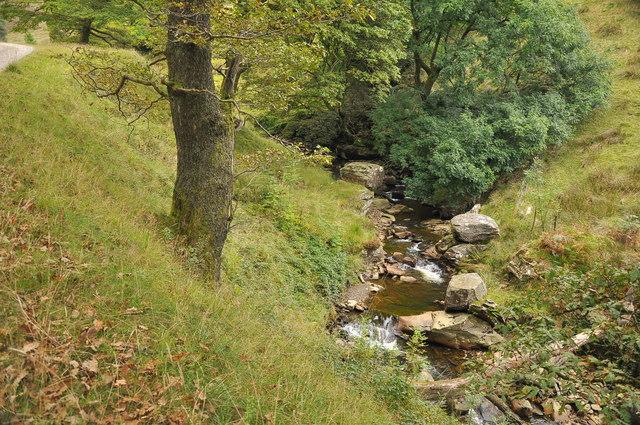 The Afon Corrwg Fechan - Glyncorrwg