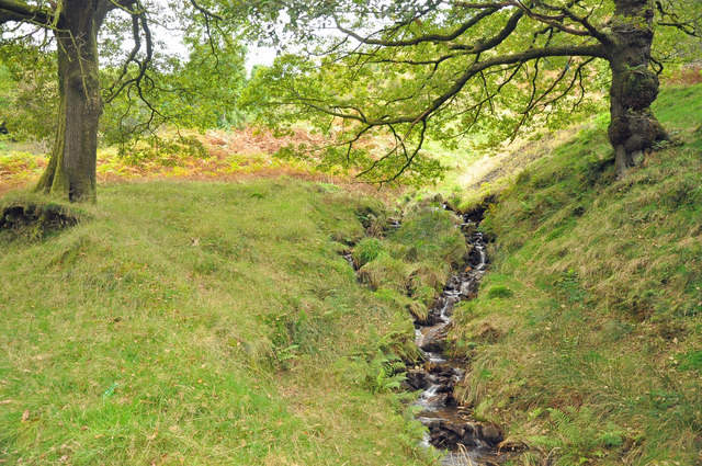 Feeder stream to the Afon Corrwg Fechan - Glyncorrwg