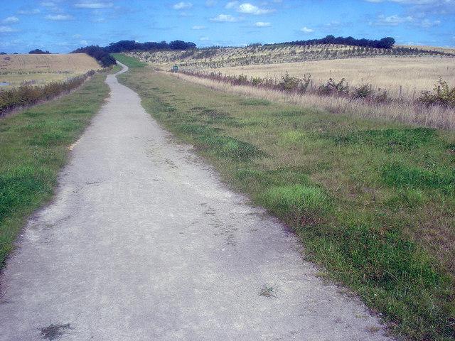 Restored land east of Moira