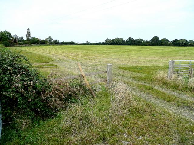 Grassland near Hinton Cross 1