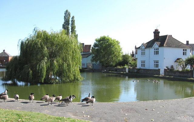 Doctor's Pond, Great Dunmow, Essex.