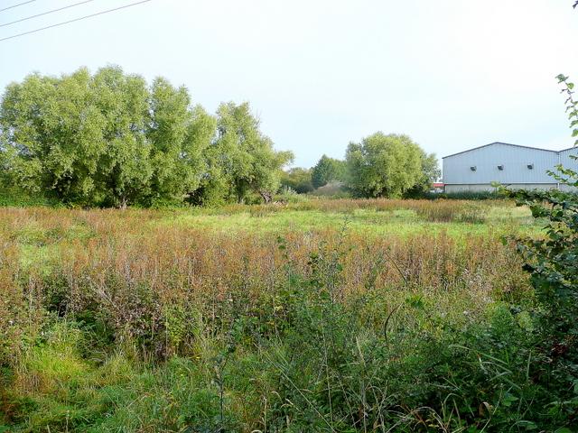 Waste ground north of Northway Lane