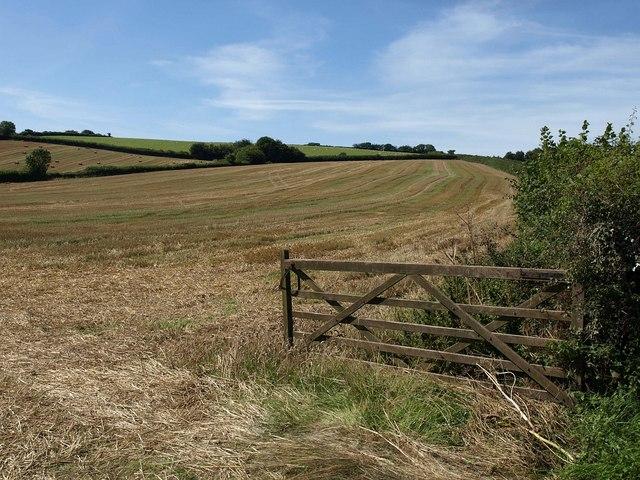 Field near Bowbeer