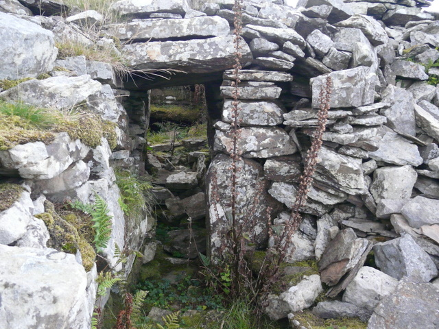 Entrance to the South Yarrows South chambered cairn