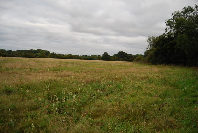 Field north of the River Medway