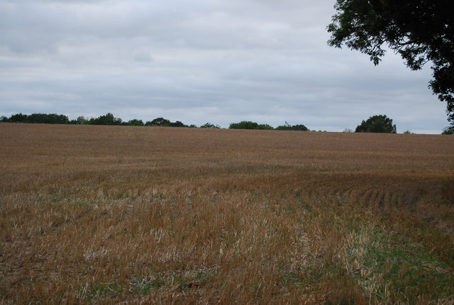 Large arable field north of Powder Mills