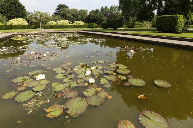 Kingsnorth Gardens, Folkestone, Kent