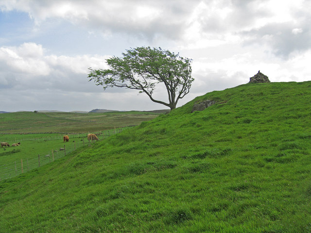 Cairn, Fereneze Hills
