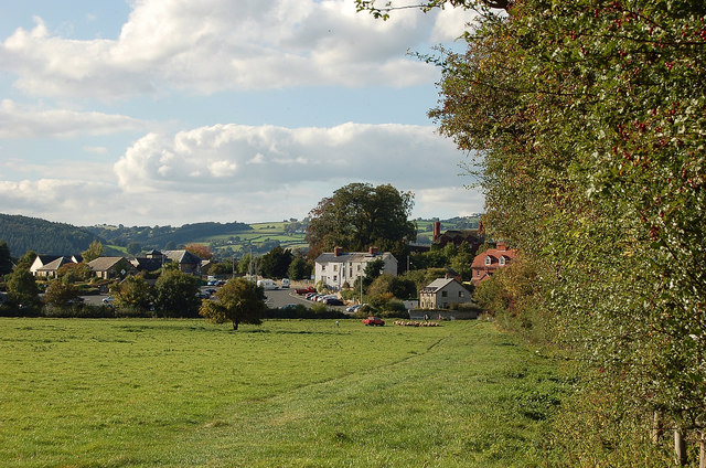 Gathering the sheep, Hay-on-Wye