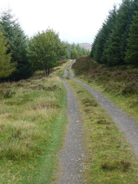 Forest track below Fàire Mhòr