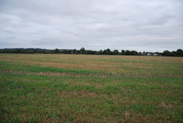 Arable land near Hilden Park