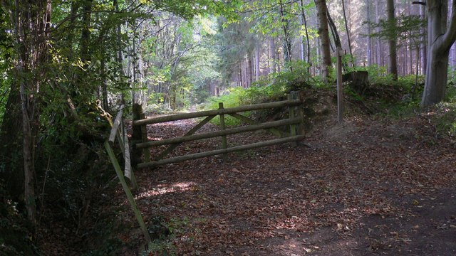 Footpath south from Highstead Lane