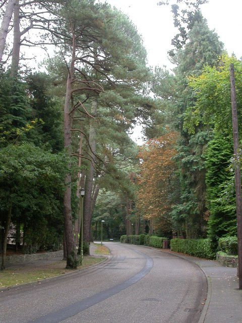Branksome Park, Bury Road