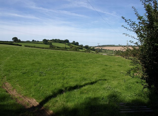 Field near West Underdown