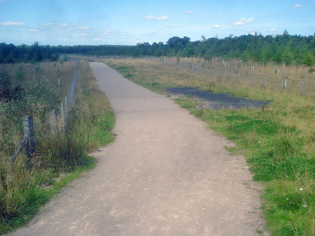 Path through the Hicks Lodge reclamation area