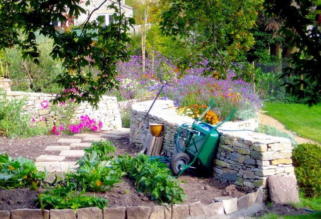 Kitchen garden - Worth Matravers