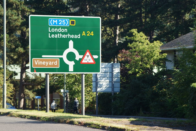 Vineyard Ahead!