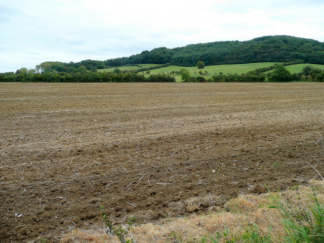 View to Dumbleton Hill