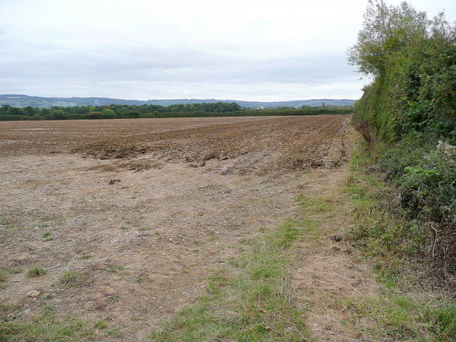 Arable land east of Dumbleton 1