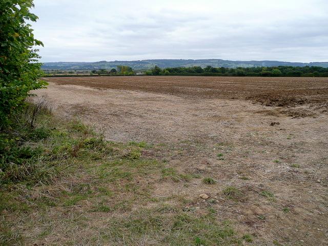 Arable land east of Dumbleton 2