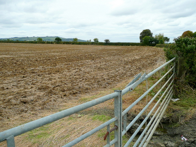Arable land east of Dumbleton 3