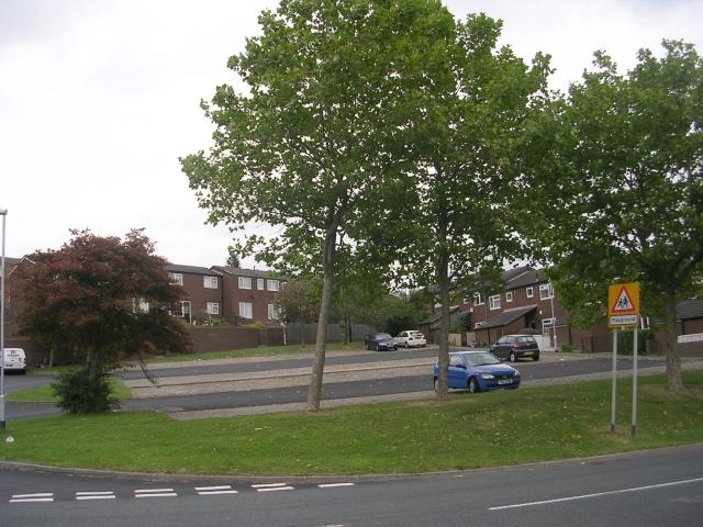 Dulverton Square - Cottingley Drive