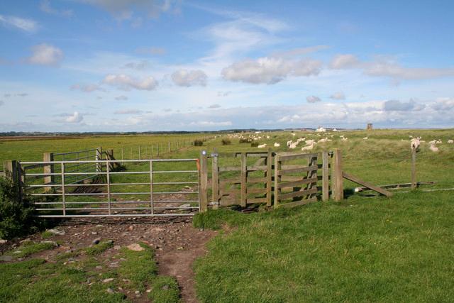 Gate on the Northumberland Coast Path