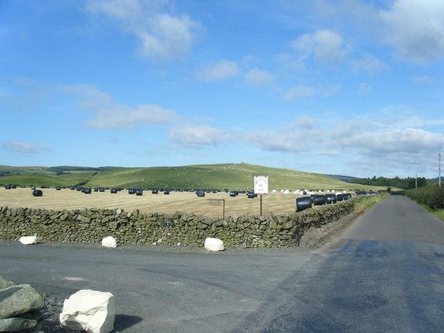 Junction of Burnside farm road