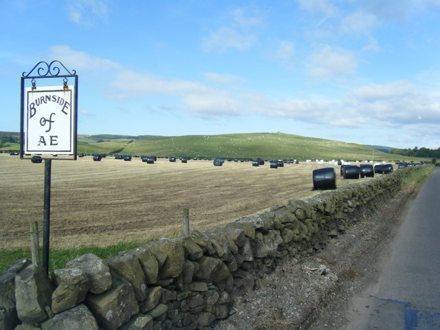 Field at Burnside Farm, Ae