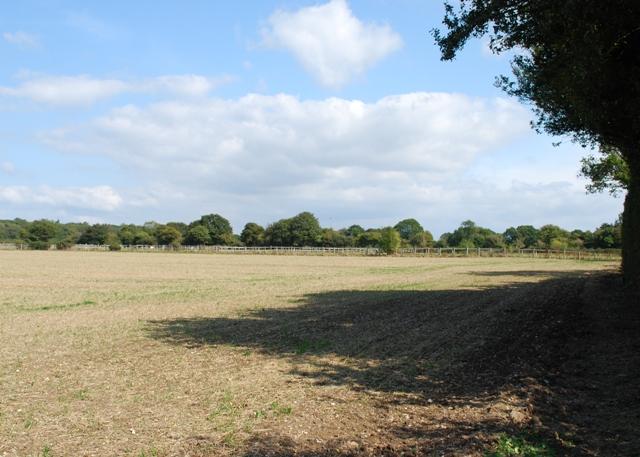 Farmland and footpath