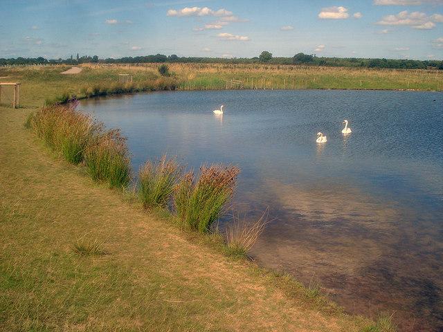 Large pond at Hicks Lodge - 3