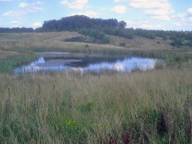 Pond at Hicks Lodge