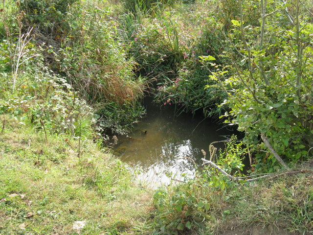 Cowfold Stream a tributary of the River Adur