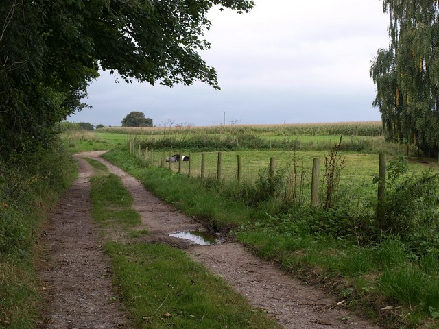 Track at Dinnington