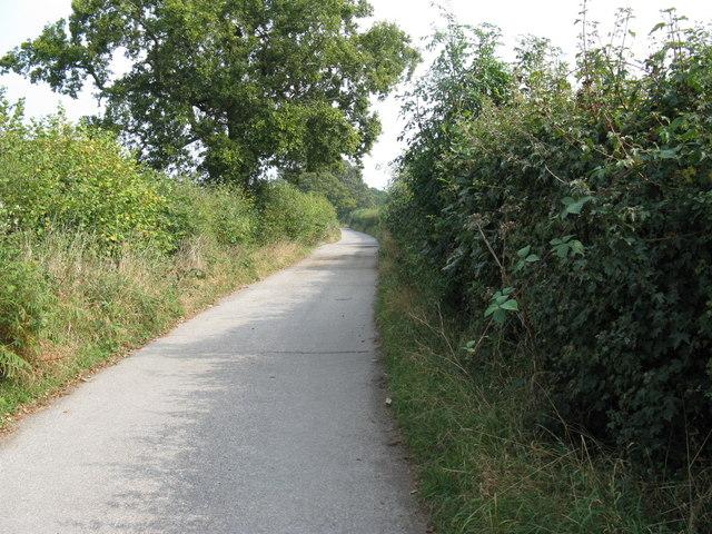 Moatfield Lane