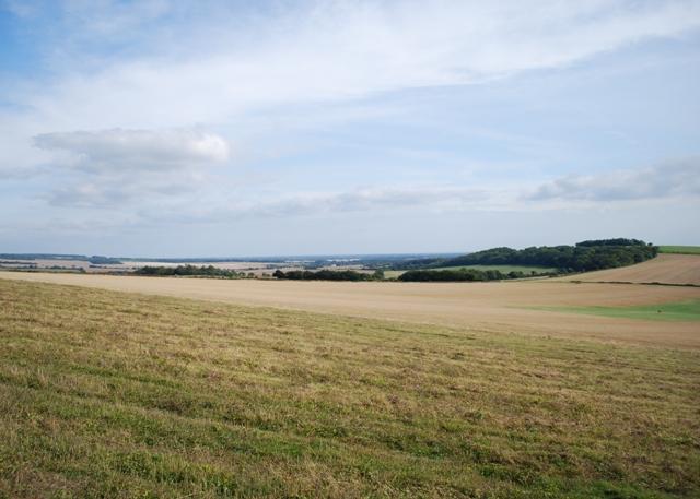 Farmland near Kingley Vale