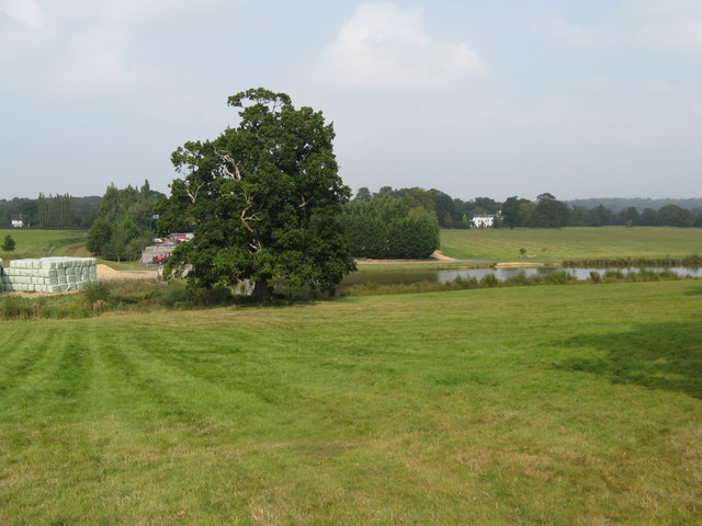 Looking north from footpath near Taintfield Wood