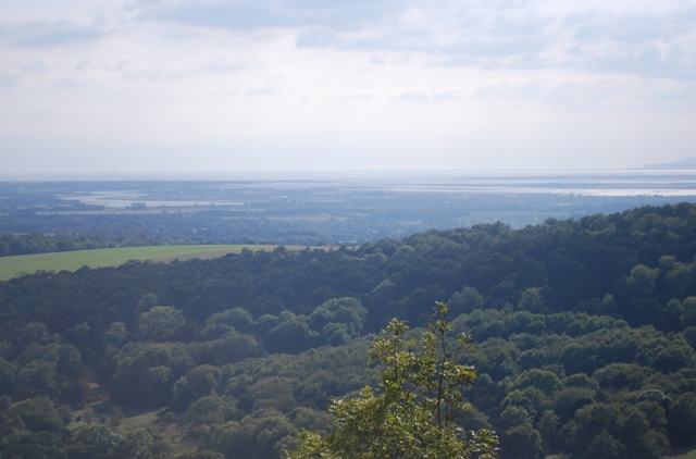 The Isle of Wight from Kingley Vale