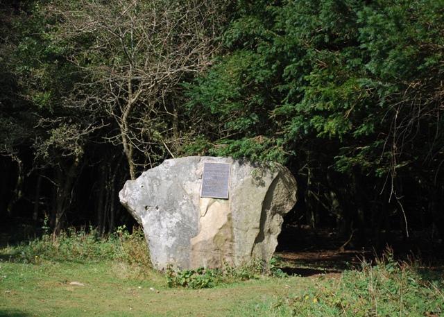 The Tansley Stone, Kingley Vale