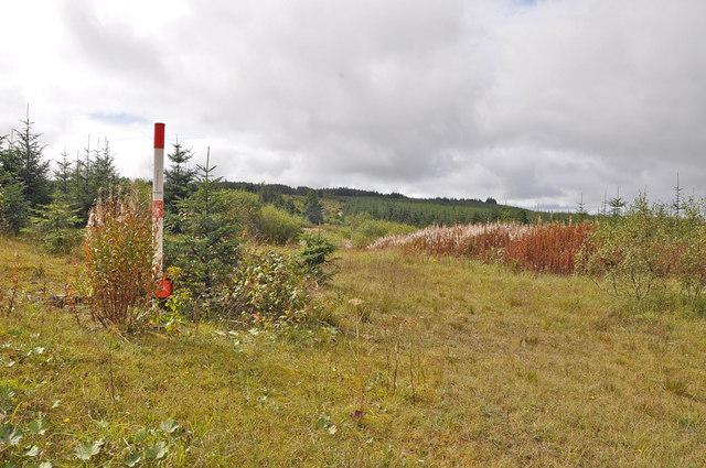 Gas pipe-line marker - Bryn Llydan
