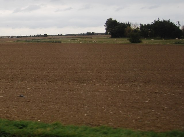 Ploughed field south of the A259