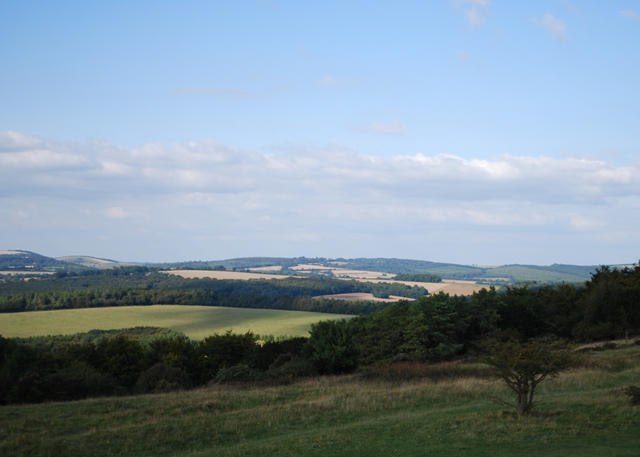 Stoughton Down from the Devil's Humps.