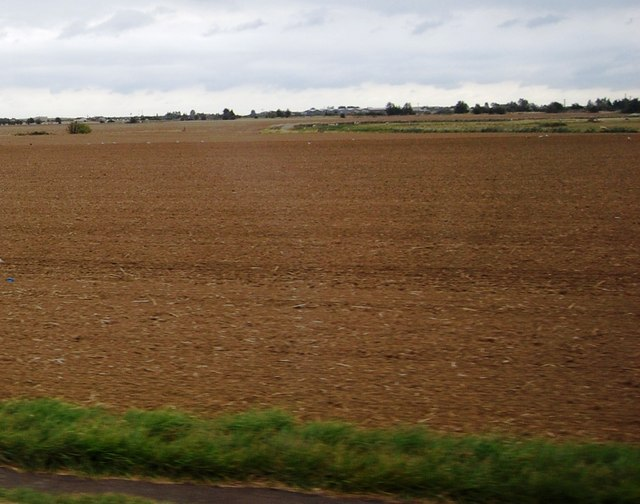 Large field south of the A259