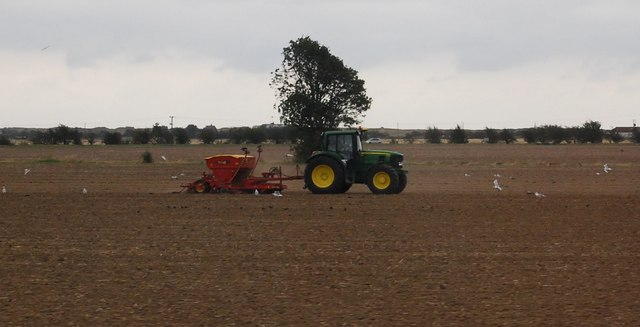 Farming activity south of the A259