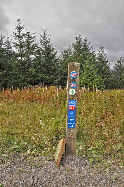 Trail marker - Afan Forest  Park
