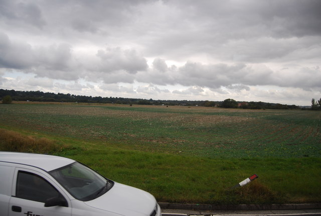 A field off Camber Rd