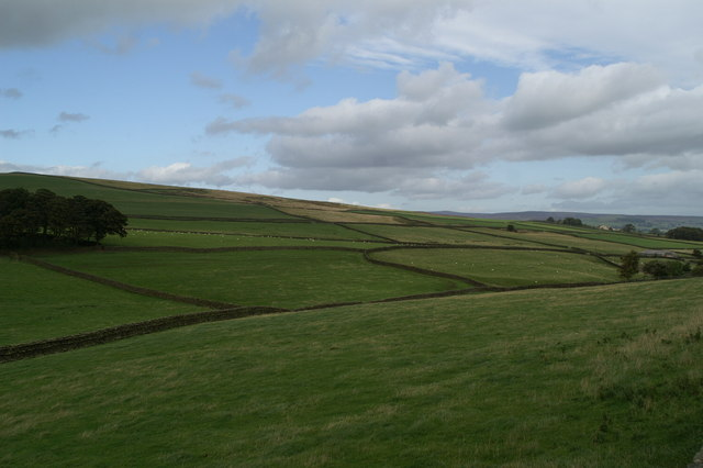 Dry stone walls on Addingham Low Moor, from the A6034