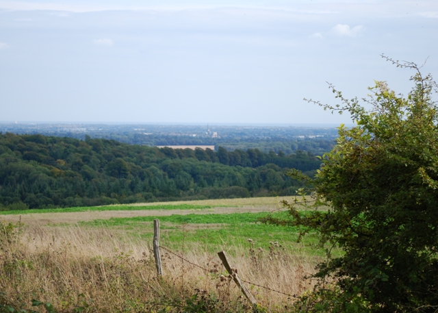 Chichester from Kingley Vale