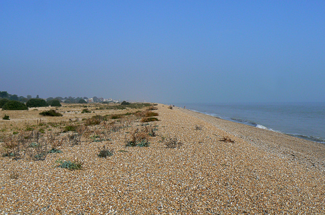 Shingle ridge on Walmer Beach