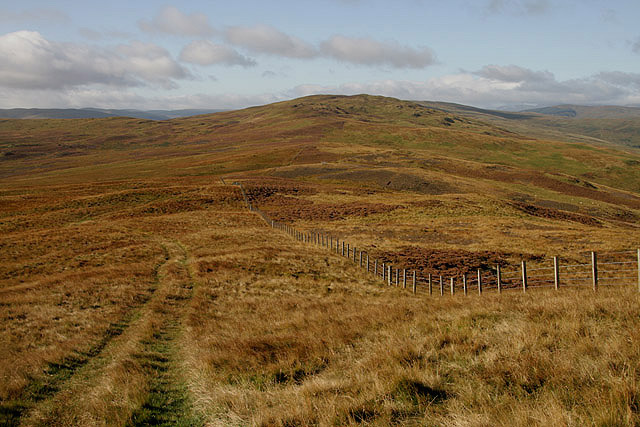 A grass track between Rough Knowe and Ladhope Middle